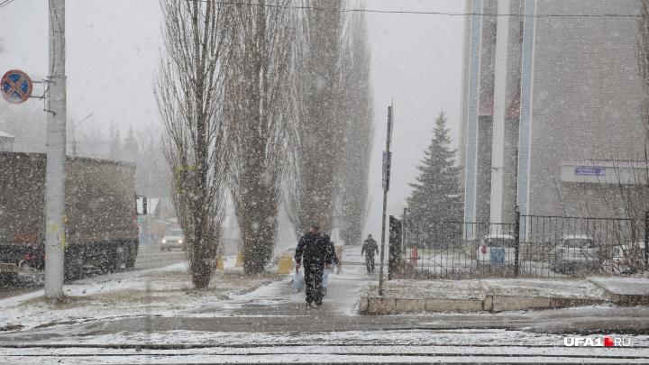Паркуйтесь подальше от деревьев: в Башкирии объявили штормовое предупреждение