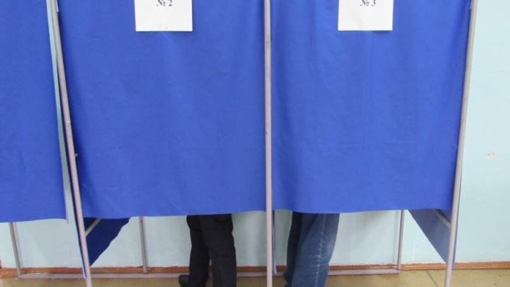 Бюллетени на выборах в гордуму Кургана обезопасят от подделок защитной сеткой