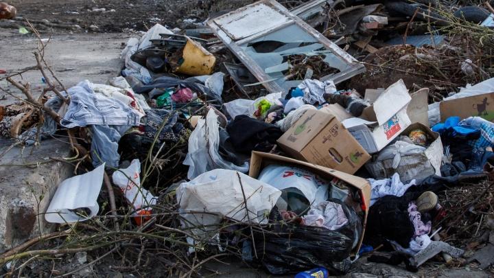 «С мусором всё хорошо»: депутаты Волгоградской облдумы решили не спрашивать губернатора об отходах