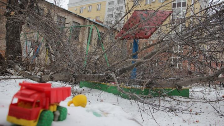 «У совета дома был небольшой шок»: заваленную ветками детскую площадку до сих пор не расчистили