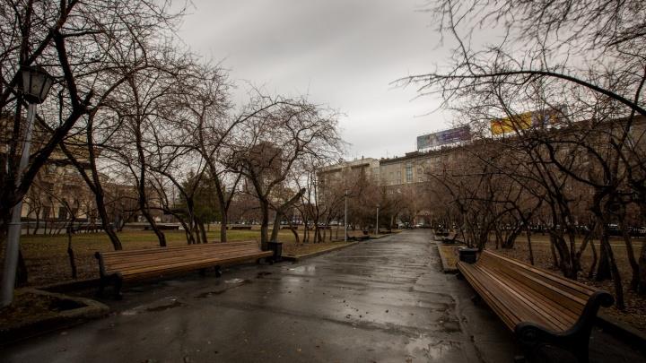 Синоптики признали май в Новосибирске аномальным