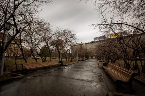 Синоптики заверяют, что это не первый аномальный май в Новосибирске