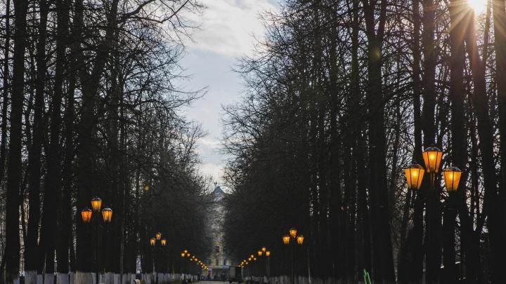 Был один, а станет два: в Ярославле хотят переименовать Первомайский бульвар