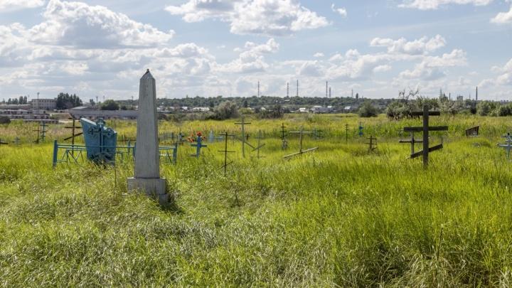 В Волгограде придумают областной тубдиспансер на заброшенном кладбищеза 90,8 миллиона рублей