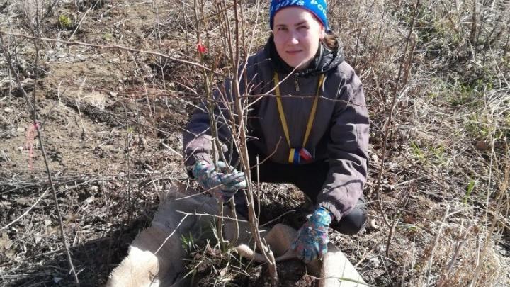 Яблок хватит всем: на Урале заложили первый промышленный фруктовый сад