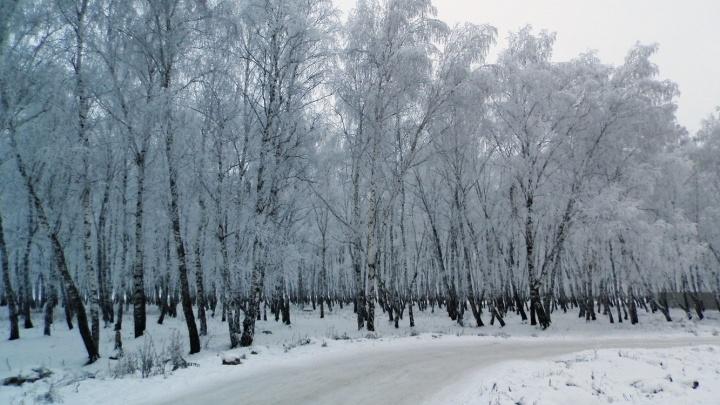 В Омской области из-за холодов перекрыли движение на границе с Казахстаном