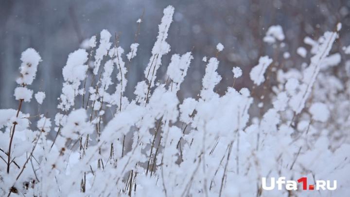 Снегопад и метель: в Башкирии похолодает до –30 градусов