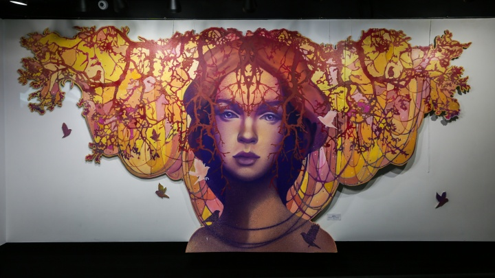 Популярная уличная художница написала двухметровые картины о грёзах красавиц