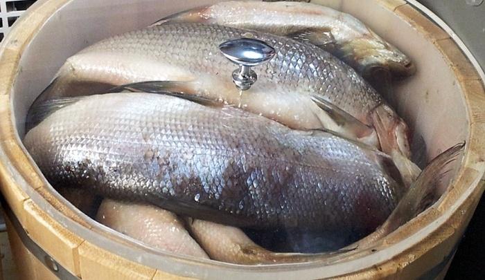 Что случилось с «Делси»: новый собственник выкупил переработку рыбы