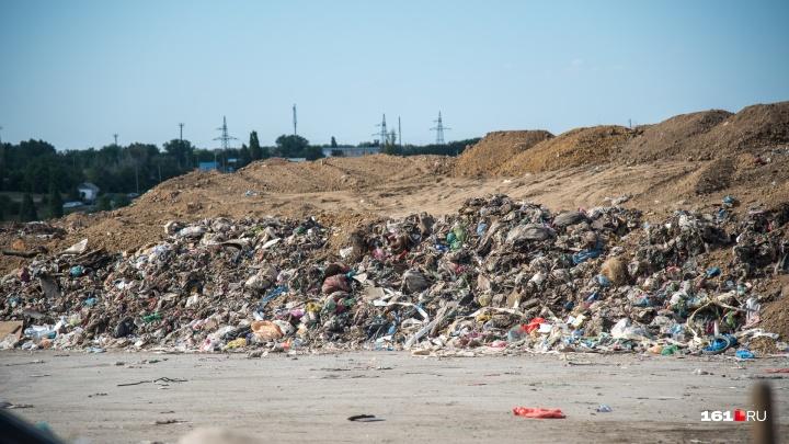 Рекультивацией главной мусорки Ростова займутся красноярцы. Они сбили цену проекта в два раза