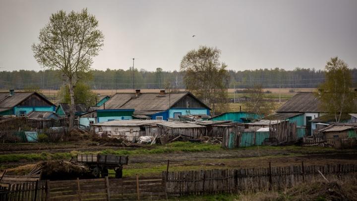 Гнездо социализма. Спецрепортаж из села, где построили идеальный колхоз