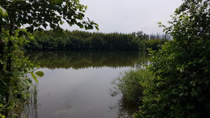 «Её нашли на глубине»: под Сызранью 13-летняя девочка утонула в озере