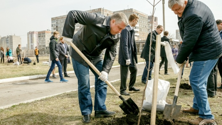 Полторы тысячи новых деревьев высадят у школ и детских садов в Магнитогорске