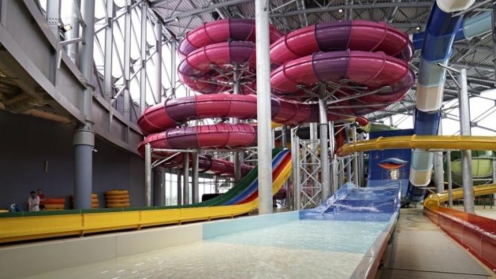 За 175 миллионов рублей: в Перми объявили новый аукцион по проектированию аквапарка