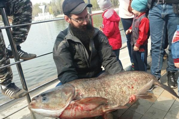 Самарцы недоумевают, как в озере на Металлурге могла вырасти такая рыбина, и подозревают, что дело тут может быть в мутации