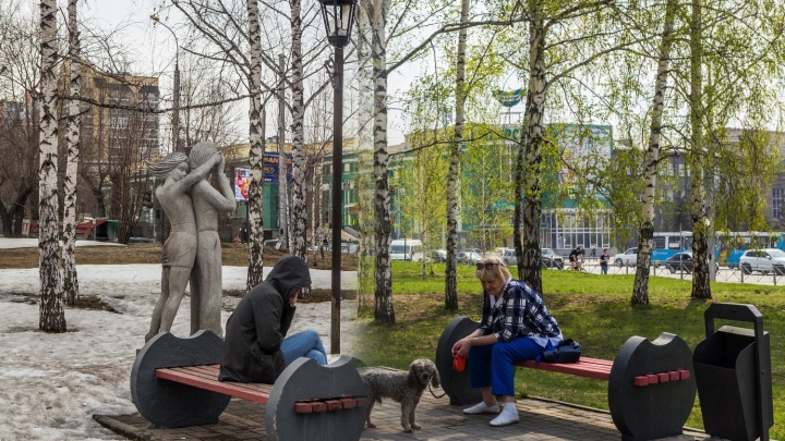 Лысые против зелёных: посмотрите, как весна сделала Новосибирск красивым