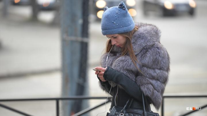 Снега не будет: на этой неделе в Екатеринбурге немного потеплеет, но осадков не обещают
