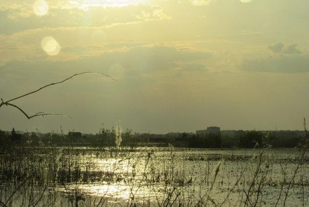 Заморозки ночью и лето днём: какая погода ждёт Курган в выходные