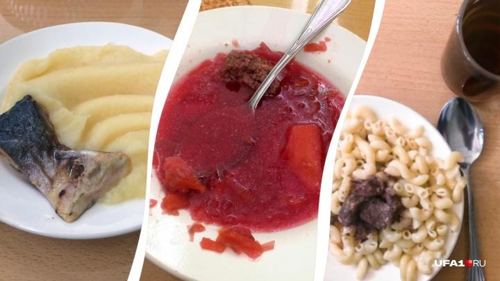 «И они называют это едой!»: 5 дней школьного питания глазами детей