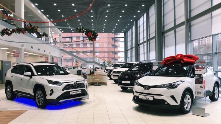 В Новый год на новой Toyota: предложение «Медведь БизнесАвто» слишком выгодно, чтобы говорить вслух