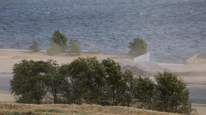Сметающие все на своем пути порывы ветра продолжат атаковать Волгоградскую область