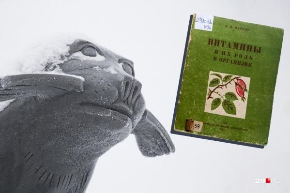 Памятник тюленю в Архангельске, а также личные дневники и книжки 1941–42 гг. хранят память о том, чем питались жители области в Великую Отечественную войну