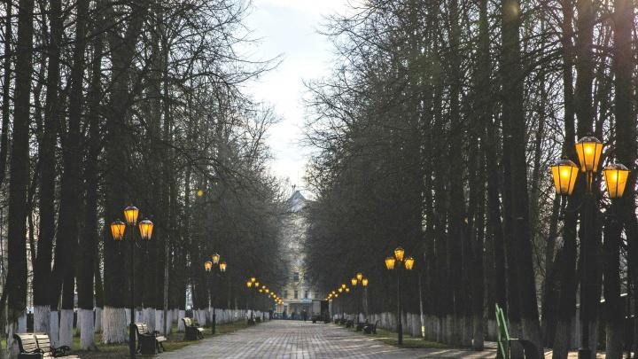 В Ярославле Первомайский бульвар разделят на две части. И каждую переименуют