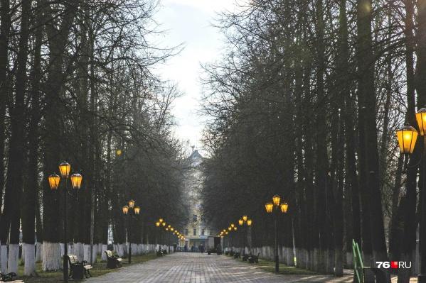 В Ярославле из одного бульвара сделают два