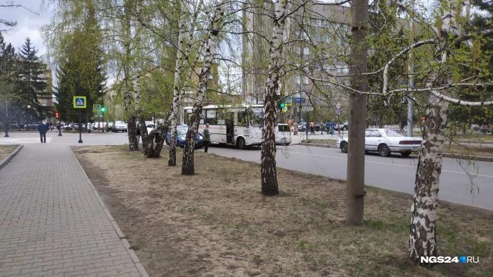 Автобус на повороте зацепил легковушку. Авария поставила проспект Мира в пробку