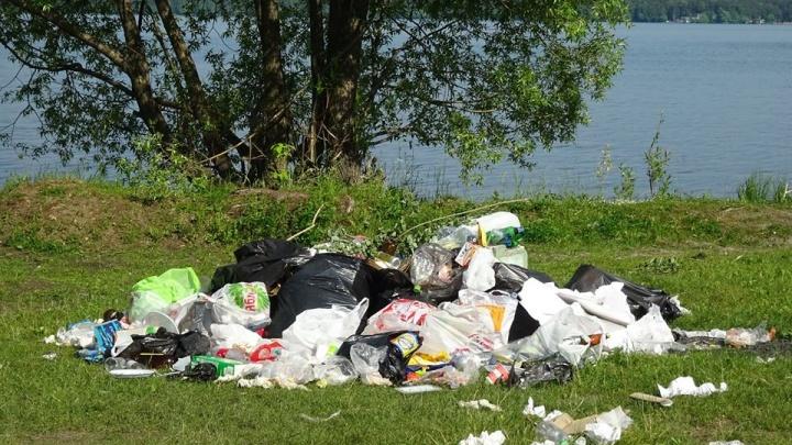 В Шарташском лесопарке объяснили, почему берега озера завалены мусором
