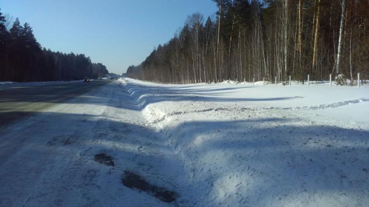 Ищут очевидцев:браконьеры застрелили и разделали лося под Новосибирском