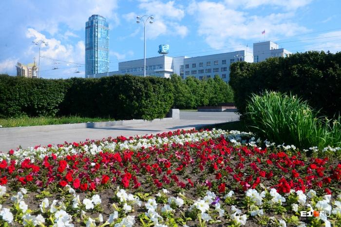 Пестрый цветочный ковер в самом центре Екатеринбурга