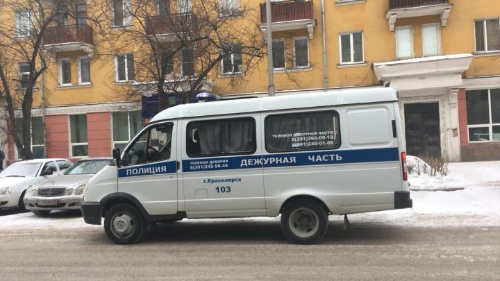 Красноярцы удерживали напавшего на женщину грабителя до приезда полиции