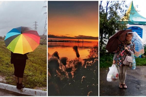 Дождливые выходные — время шуток о погоде и акварельных пейзажей