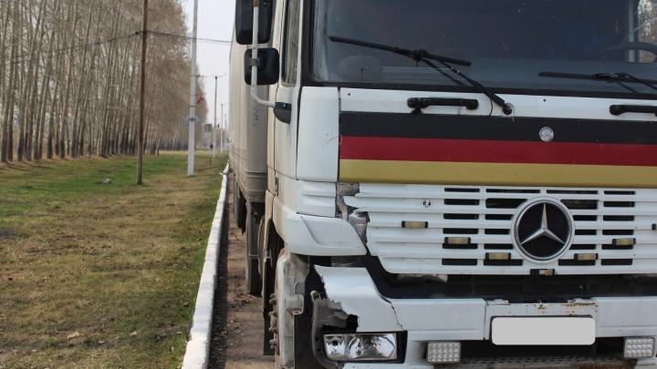 Водитель грузовика сбил ночью на трассе человека и заметил только утром (фото)