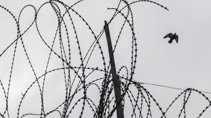 «Не провёл и дня на свободе»: отмечавшего выход с зоны волгоградца убили в центре парка