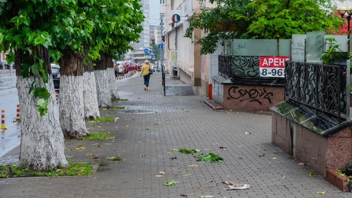 МЧС предупреждает: в Прикамье при грозе будут сильные порывы ветра