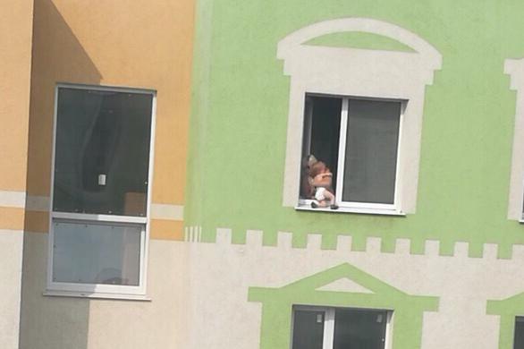 """Очевидцы: «В """"Кошелев Парке"""" женщина наказала малыша, посадив в открытое окно»"""