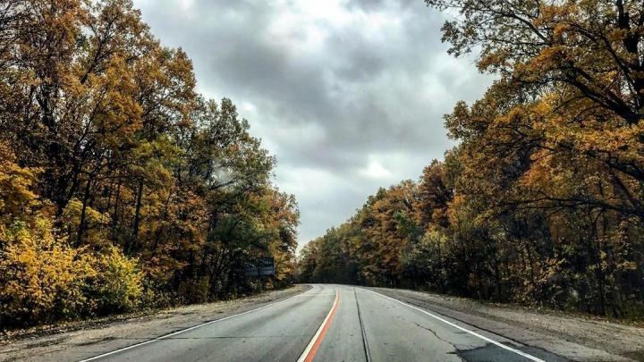 Топ-10 самых красивых фото волгоградской природы в октябре из Instagram