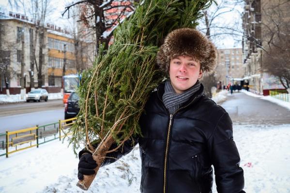 В Кемерово елочные базары начнут работать с 15 декабря