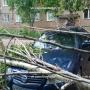 Последствия урагана в Уфе: дерево придавило иномарку