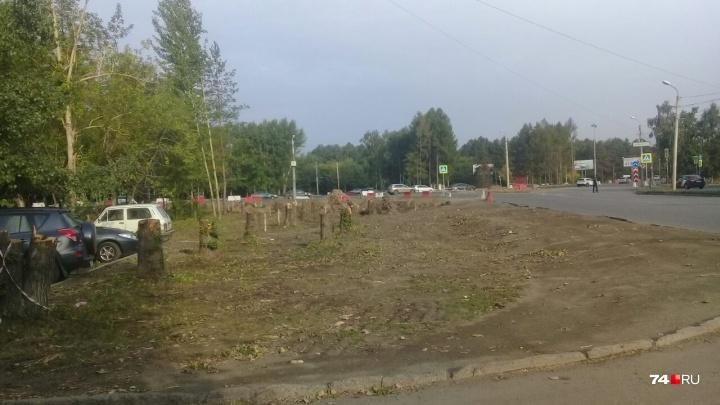 «Ведь врио говорил, что не тронут»: на улице Дарвина в Челябинске начали пилить деревья