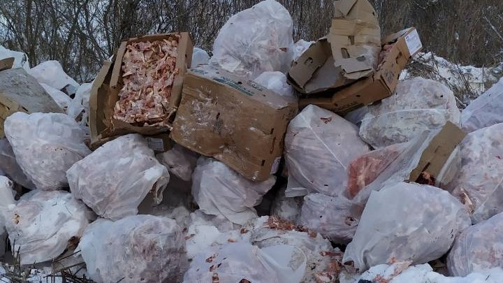 Гору куриных костей обнаружили в лесу под Тюменью