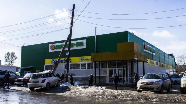 После убийства пуделя в супермаркете «Мария-Ра» полиция завела уголовное дело