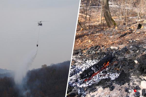 Добраться до некоторых участков горящего леса нельзя ни пешком, ни на транспорте