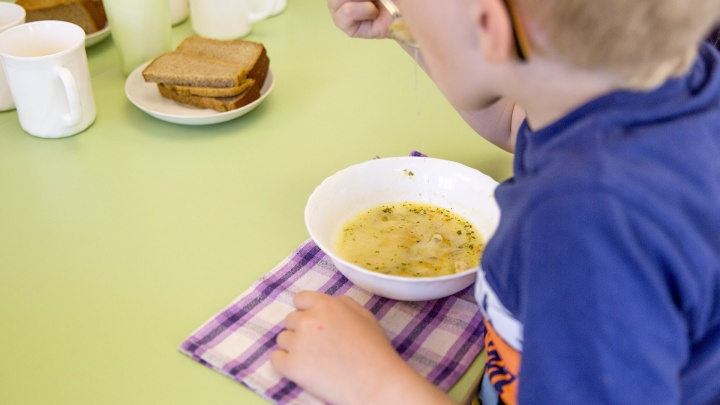Одним — льготы, другим — наценки: в Ярославле начали менять систему оплаты садиков и школьных обедов