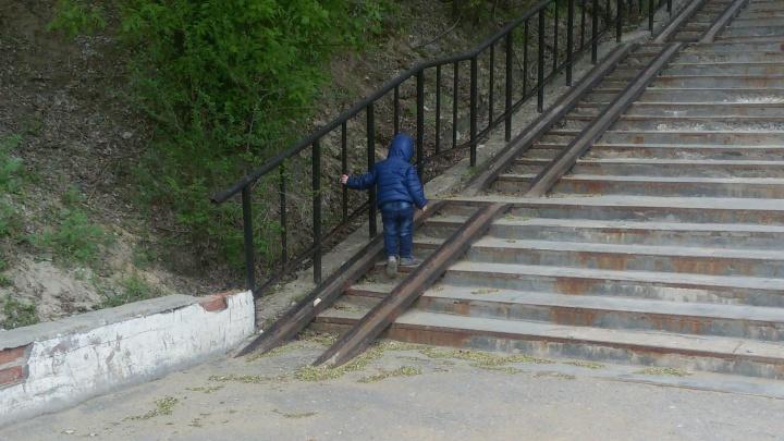 «Уехал на трамвае»: трехлетний мальчик пропал в Волгограде