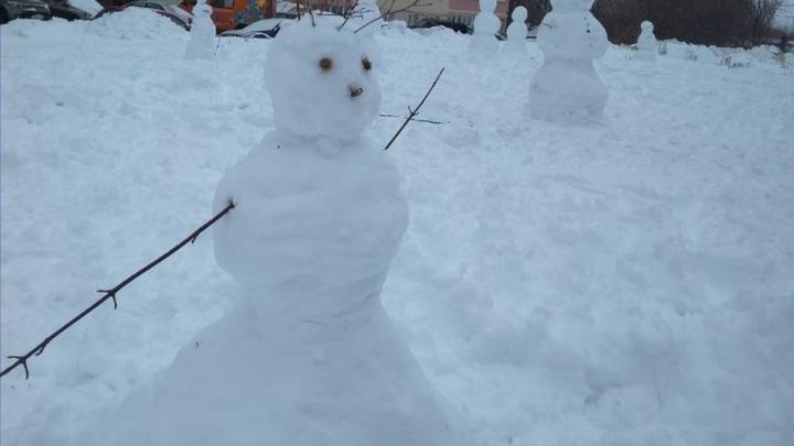 На защиту зимы! Жители Самары слепили 100 снеговиков