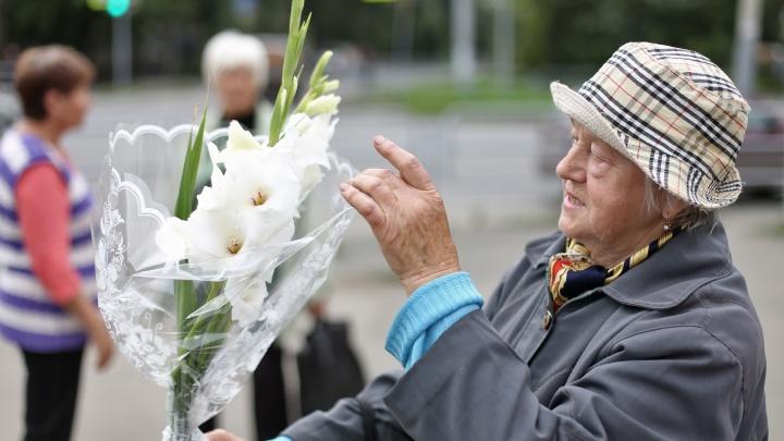Бабушки-цветочки: где челябинцам купить самый яркий и тёплый букет ко Дню знаний