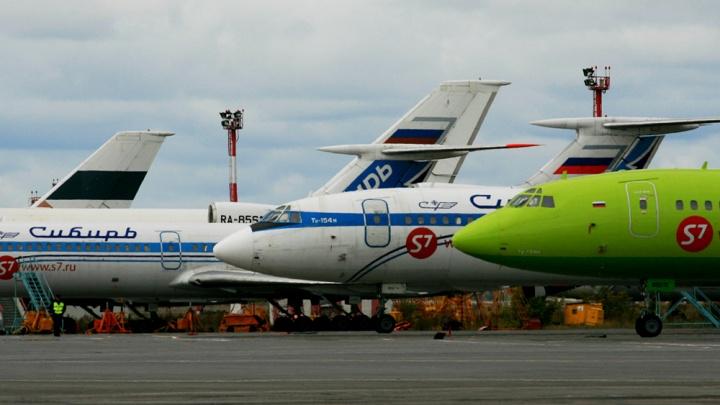 Новосибирская авиакомпания изменила своё название в поддержку сибирских лесов